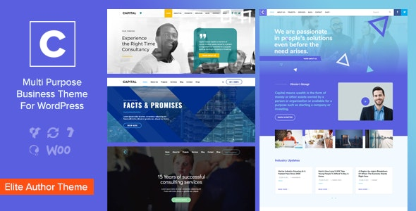 Capital - Multi Purpose Business WordPress Theme - Corporate WordPress