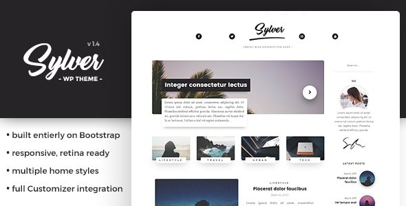 Sylver - Responsive WordPress Blog Theme - Personal Blog / Magazine