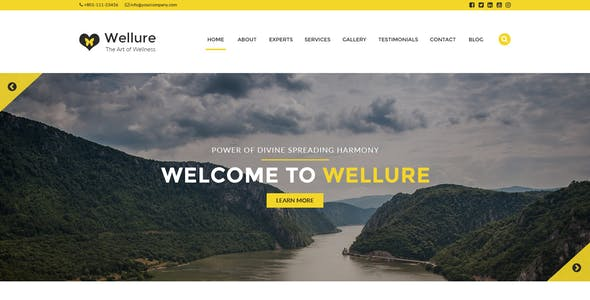 Wellure - The Art of Wellness