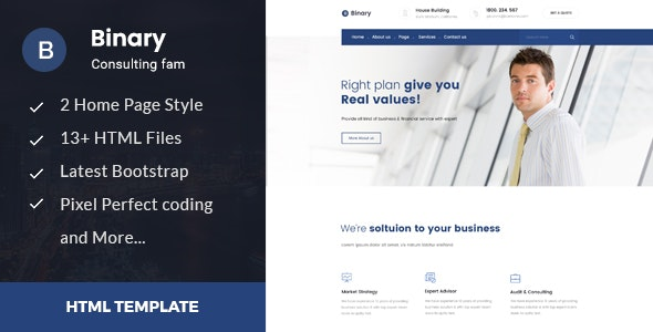 Binary - Business Consulting and Professional Services HTML Template - Business Corporate