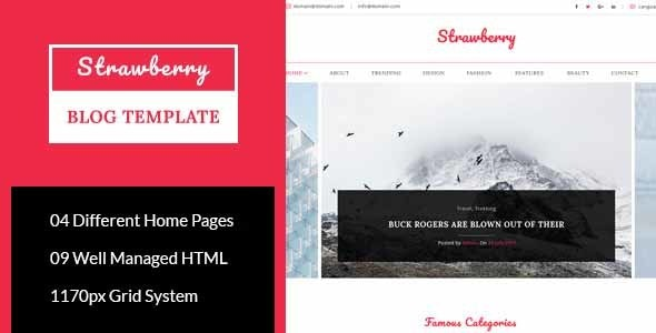 Strawberry - Minimal Blog HTML Template - Personal Site Templates
