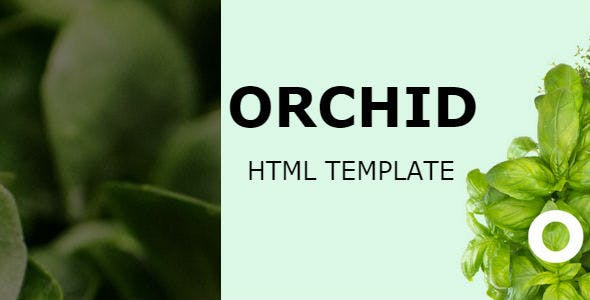 Orchid | HTML Template