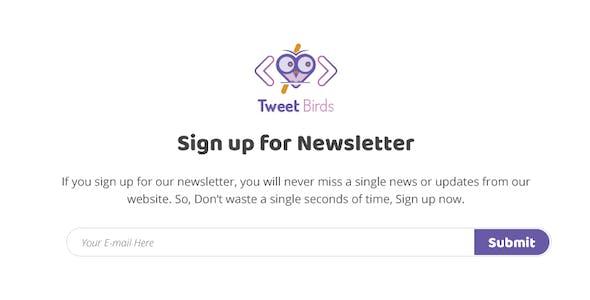 TWEETSBIRD-Portfolio PSD Template