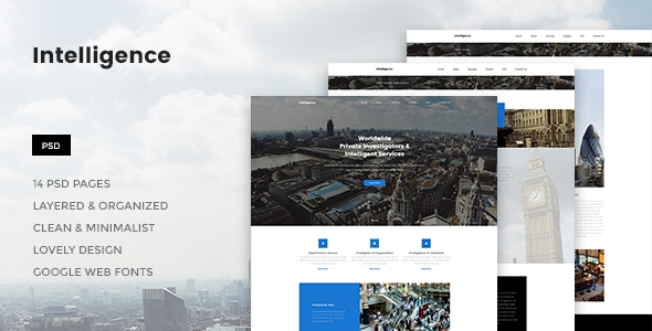 Intelligence - Individual & Corporate Investigations PSD Template - Corporate Photoshop