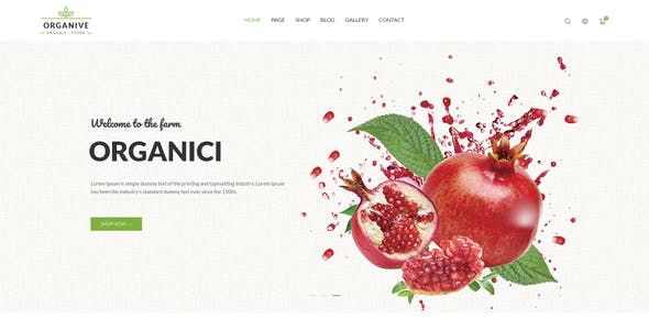 Organive - Organic Store & Eco Food Products PSD Template