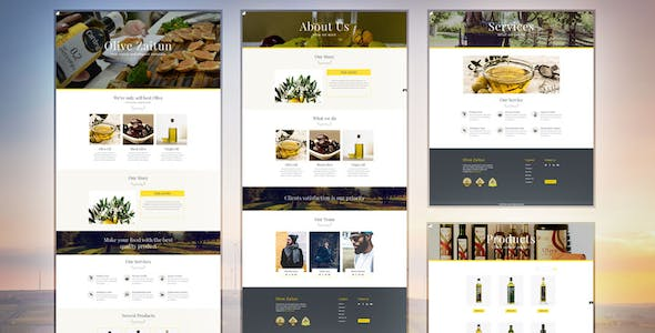 Accordion Slider Adobe Muse Themes & Muse Templates