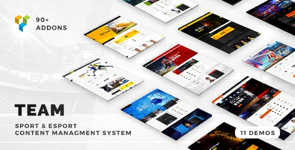 Team - Soccer, Football, Hockey, Basketball Club & eSport Gaming WordPress Theme - Entertainment WordPress