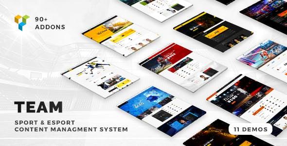 Team - Soccer, Football, Hockey, Basketball Club & eSport Gaming WordPress Theme