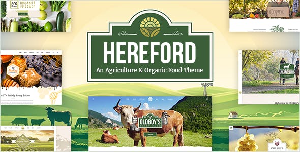 Hereford - Agriculture and Organic Food Theme
