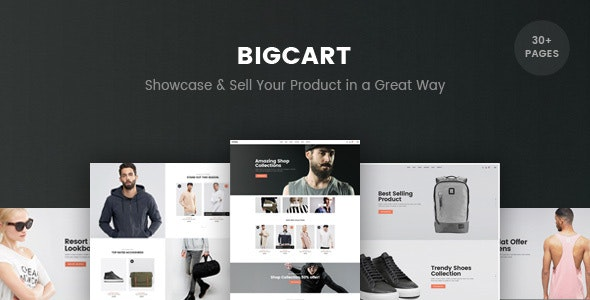 BigCart - Responsive Shopify Template (Sections Ready) - Fashion Shopify