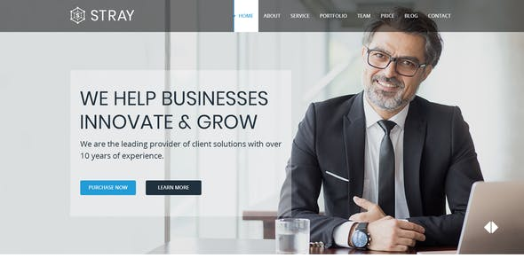 Stray - One Page Business PSD Template