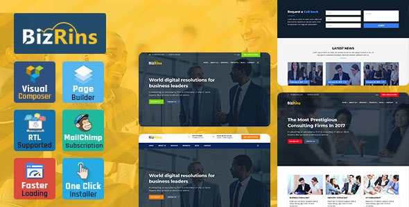 BizRins - Consultant Business WordPress Theme - Business Corporate