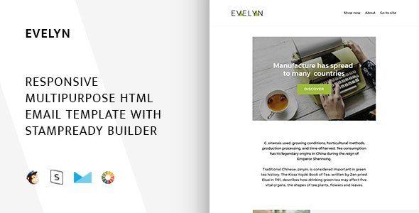 Evelyn - Responsive Email + StampReady, MailChimp & CampaignMonitor compatible files - Email Templates Marketing