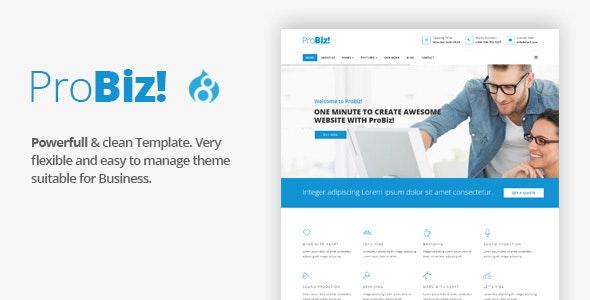 ProBiz! - Multipurpose Business Drupal 8.8 Theme - Business Corporate