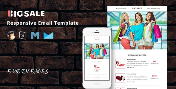 BigSale - Responsive Email Template - Newsletters Email Templates
