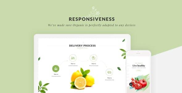 Organie - Organic Store & Food WooCommerce Theme