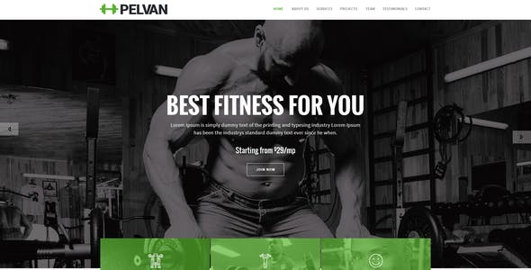 PELVAN - Gym and Fitness Landing Page HTML Template