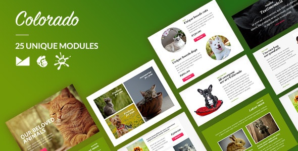 Colorado Email-Template + Online Builder - Newsletters Email Templates