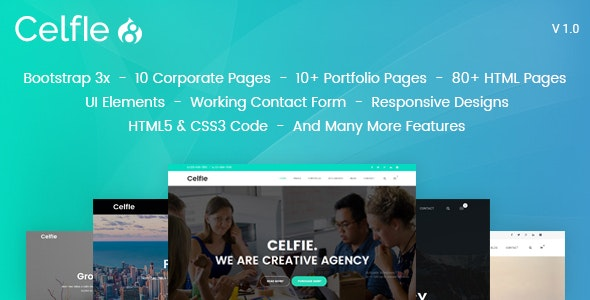 Celfie - Bootstrap 3x Multi-Purpose Drupal 8 Theme - Corporate Drupal