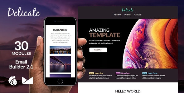 Delicate Responsive Email Template + Online Emailbuilder 2.1 - Newsletters Email Templates