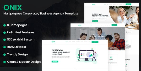 Onix Website Templates from ThemeForest