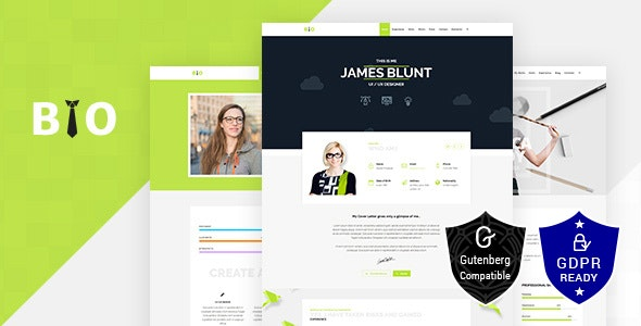 Freelancer Resume Theme - Business Corporate