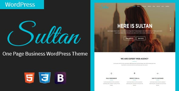 Sultan - One Page Business WordPress Theme