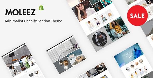 Moleez - Minimalist Shopify Section Theme - Shopify eCommerce