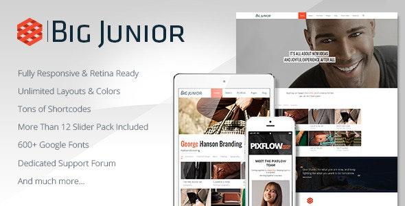 Big Junior - Multi-Purpose Responsive Theme - Corporate WordPress