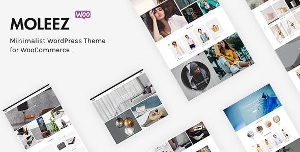 Moleez - Minimalist WordPress Theme for WooCommerce - WooCommerce eCommerce