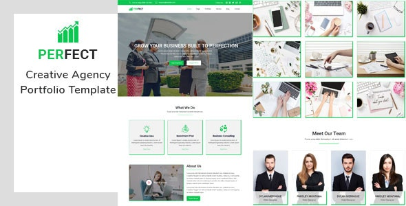 Perfect- Creative Agency Portfolio Template - Creative Muse Templates