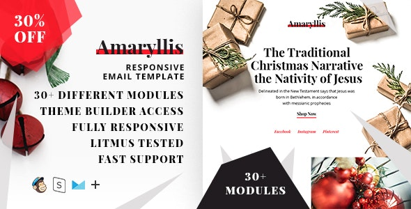 Amaryllis  – Responsive HTML Email + StampReady, MailChimp & CampaignMonitor compatible files - Email Templates Marketing