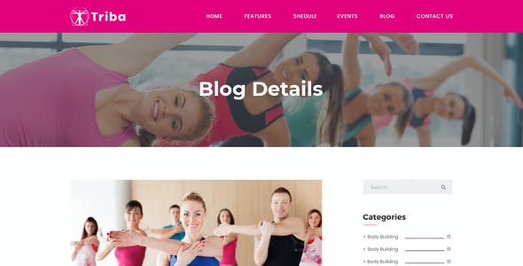 Triba - Yoga PSD Template