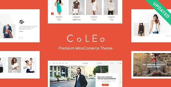 Coleo   A Stylish Fashion Clothing Store WordPress Theme