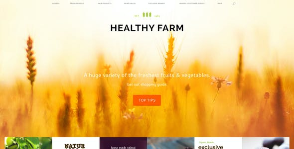Healthy Farm | Food & Agriculture WordPress Theme