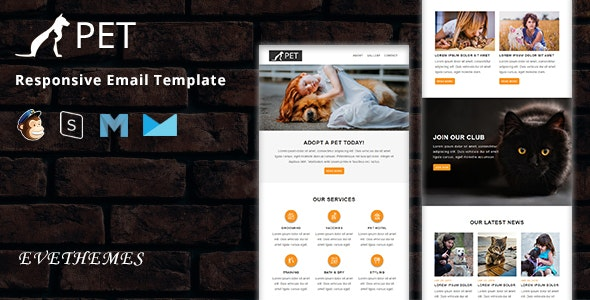 PET - Responsive Email Template - Newsletters Email Templates
