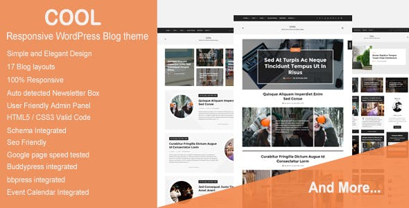 Cool - Responsive WordPress Blog theme