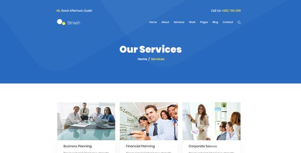 Binash - Business and Finance PSD Template