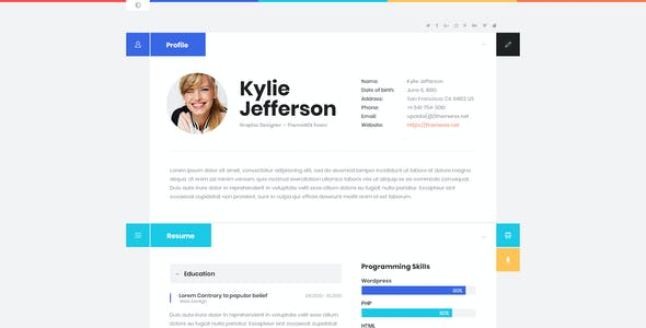 ShiftCV - Blog \ Resume \ Portfolio \ WordPress