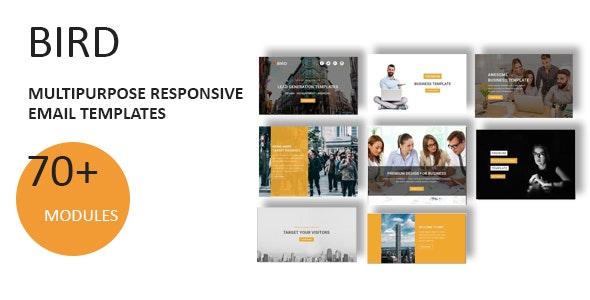 Bird - Multipurpose Responsive Email Template With Online StampReady Builder Access - Newsletters Email Templates