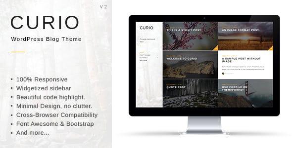 Curio - Responsive Minimal Blog Theme - Personal Blog / Magazine