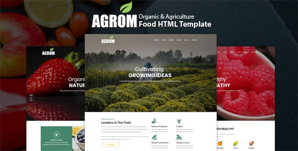 Agrom - Organic & Agriculture Food HTML Template - Food Retail