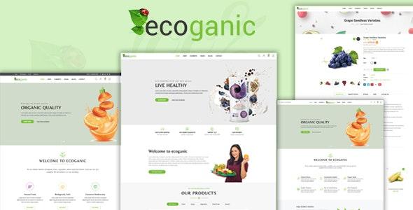 Ecoganic - An Organic Food Store Prestashop Theme - Health & Beauty PrestaShop