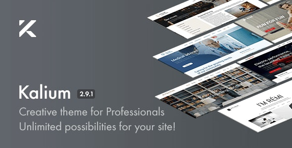 Kalium - Creative Theme for Professionals by Laborator | ThemeForest