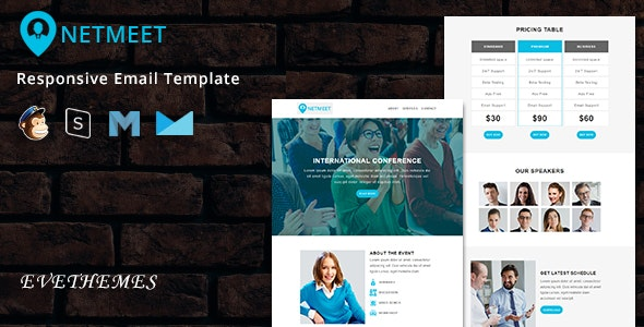 NetMeet - Responsive Email Template - Newsletters Email Templates