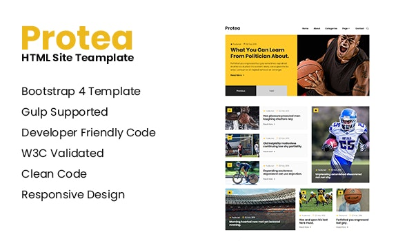 Protea - Responsive HTML Site Template by themeix