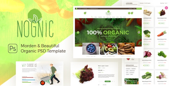 NOGNIC | Organic Food Store PSD - Food Retail