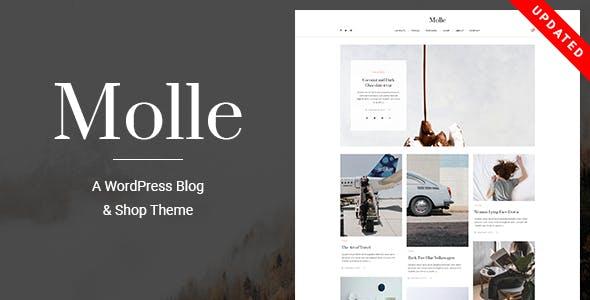 Molle - A Responsive Blog & Shop WordPress Theme