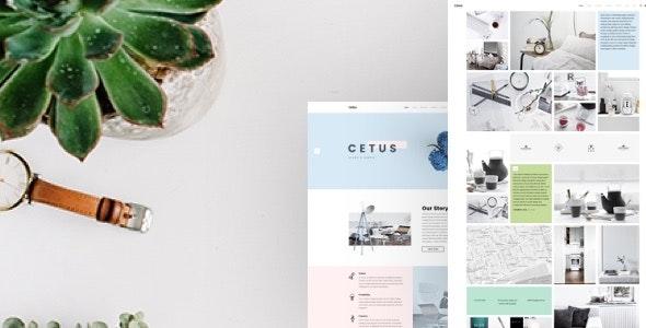 Cetus - Creative Portfolio Psd Template - Portfolio Creative