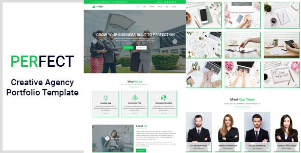 Download Perfect- Creative Agency Portfolio Template